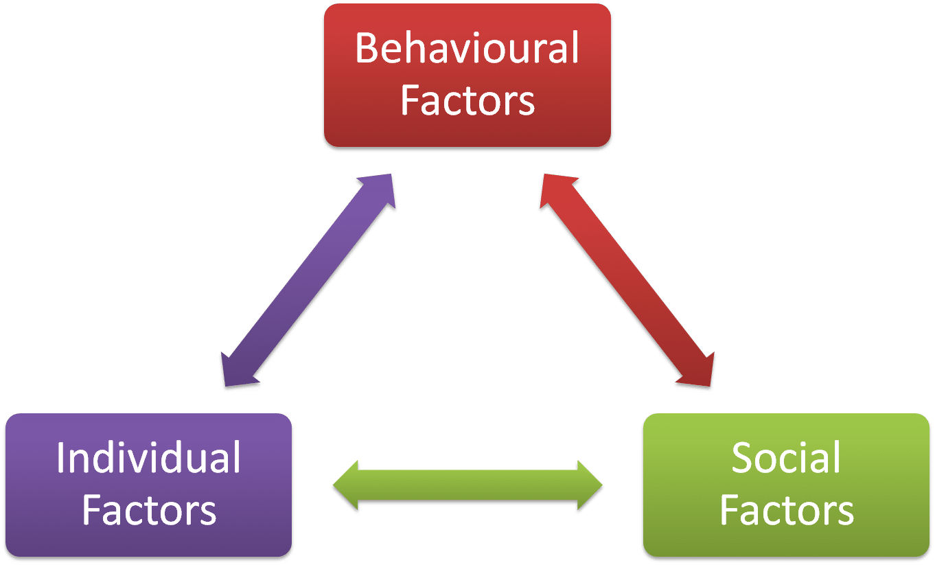 The Three Components of Reciprocal Determinism