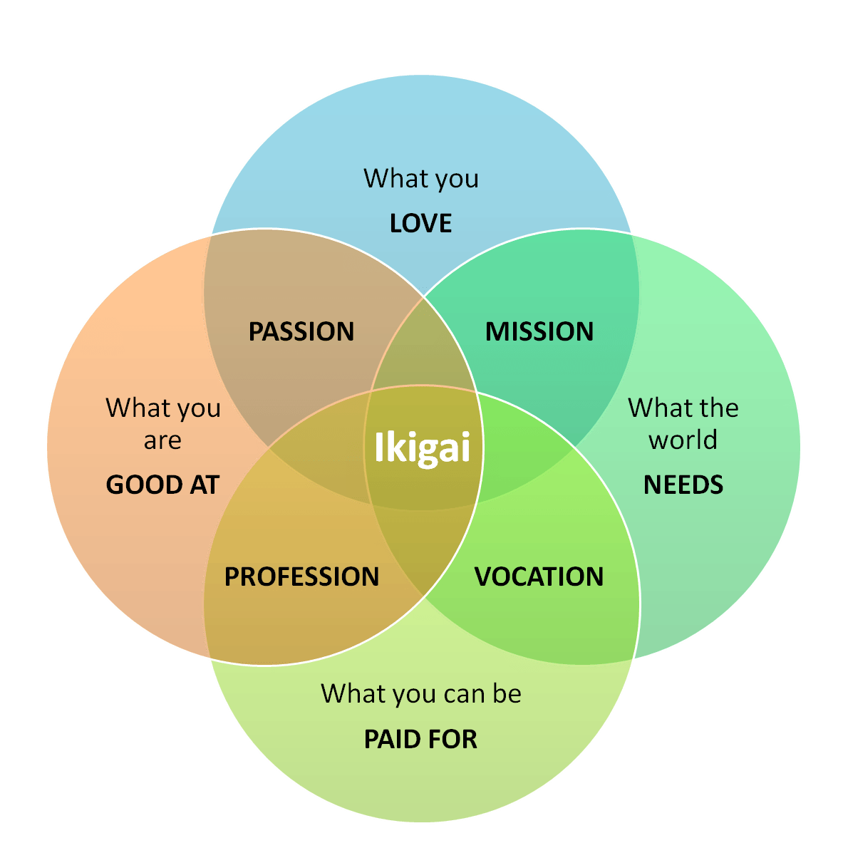 Ikigai - A Reason For Being